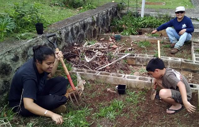 Photo of STEM Gardening