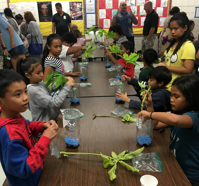 Stem School Program: HCAP Weekly October 24, 2016