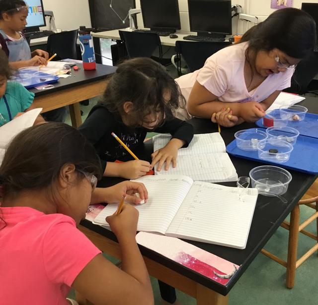 Photo of Windward STEM
